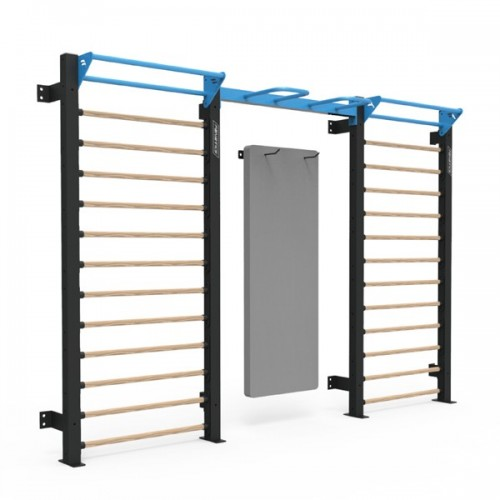 FT9003_WALL BARS-DUAL,Commercial &Home Functional training,Triumph Fitness LLC